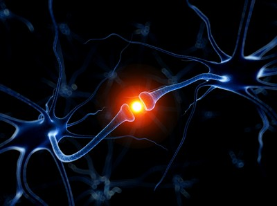 Человеческий мозг может уместить всю информацию Интернета