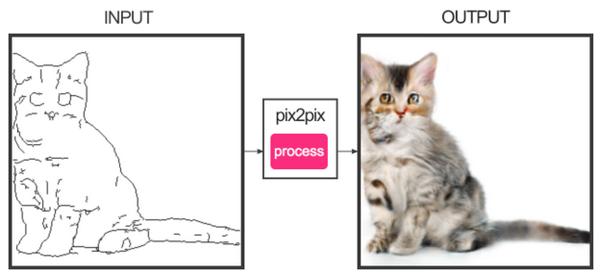 Нейросеть нарисует кошку по вашему наброску