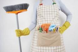 Легко ли быть домохозяйкой?