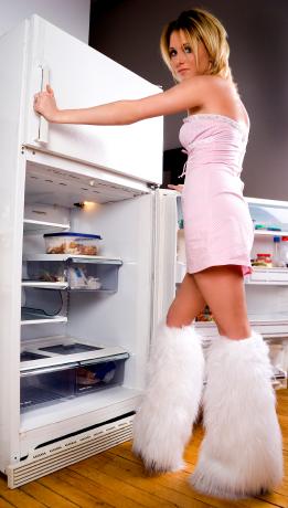 Секс, ложь и холодильник