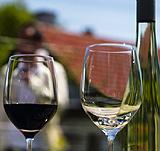 Вена, Вино & Дизайн – совмести полезное с приятным!