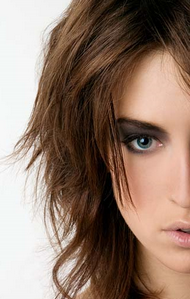 Новогодний макияж 2009