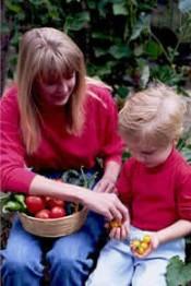 Дети: сами себе учителя. Что же остается педагогам и родителям?