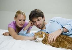 Мартовский кот и мужчина - 10 отличий