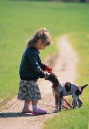 Чем опасны для детей укусы животных