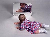 Малыш и зеркало