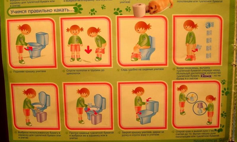 Инструкция от Kleenex
