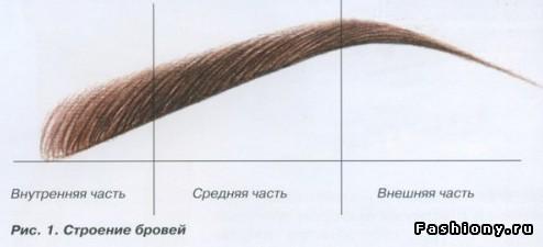 Что такое идеальные брови?